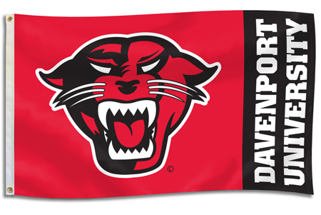 Flag 3X5 Panther Head (SKU 1001302111)